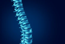 Human Spine concept as medical health care anatomy symbol with the skeletal spinal bone structure closeup on a dark blue background as blank copy space.