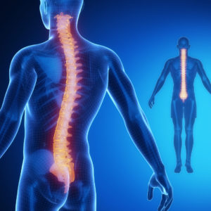 Our orthopedist in Massapequa can treat your back pain!